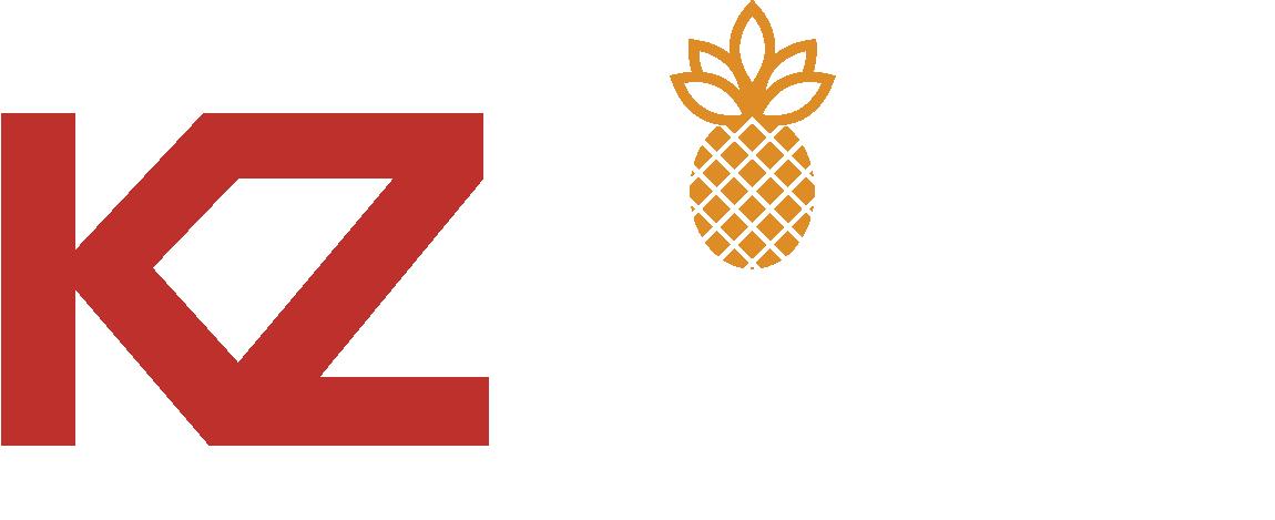 KZ Hotels